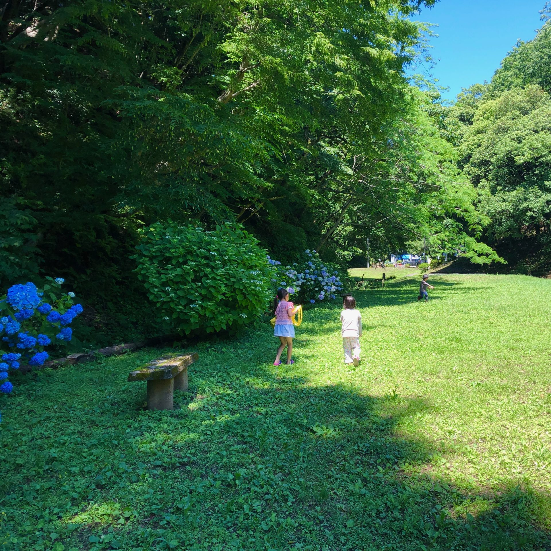 太陽の子風の子公園