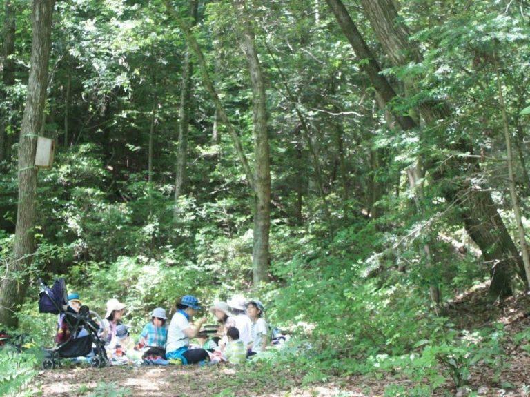 森の中でランチ
