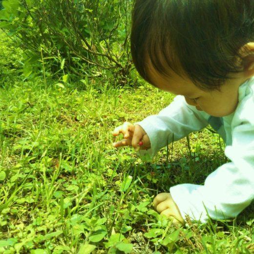 赤ちゃんと自然