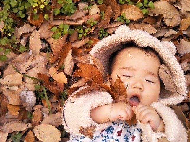 赤ちゃんと落ち葉