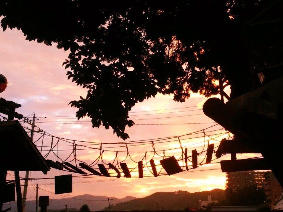 夕日のツリーハウス