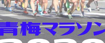Enjoy!青梅マラソン