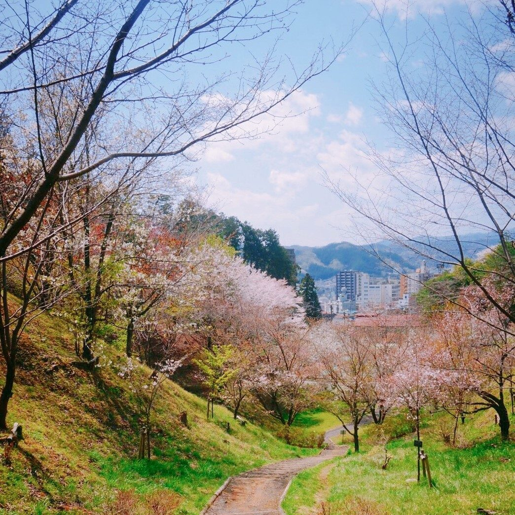 永山からのビュー