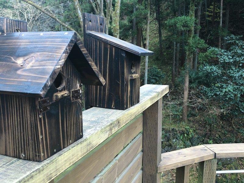 テラスの鳥の巣箱