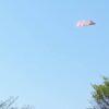 紙飛行機が飛ぶ空