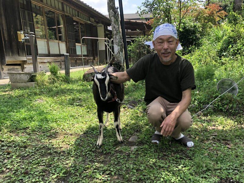 野口さんとヤギ